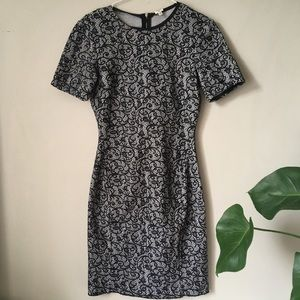 Brand New Wilfred lace dress